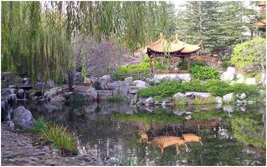 Сад                China5
