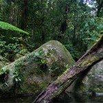 Фото Квинсленда