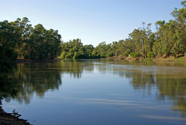 an analysis of the fresh water in contrasts to the darling river in new south wales toxic algae bloo Building a database of nutrients and algae-related water quality south umpqua river  however, the weight of particulate detritus in fresh water.