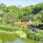 Брисбенский Ботанический сад