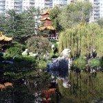 Китайский Сад Дружбы