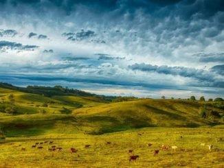 климатические пояса Австралии и погода